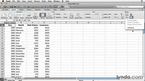 chart layout on excel for mac excel using the split and freeze features lynda com