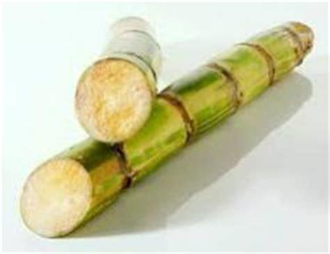 manfaat dan khasiat tebu untuk kesehatan kabarimbo