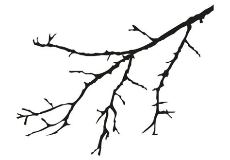 Branch Wall Stickers tree branches drawing clipart best