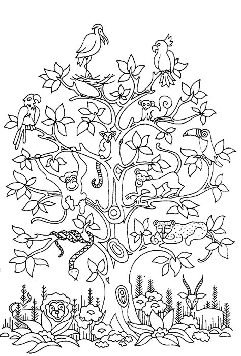 monkey coloring pages for adults free coloring page 171 coloring adult difficult tree bird