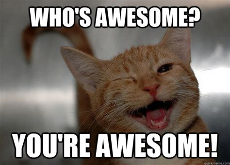 You Re Awesome Meme - who s awesome you re awesome cheer up cat quickmeme