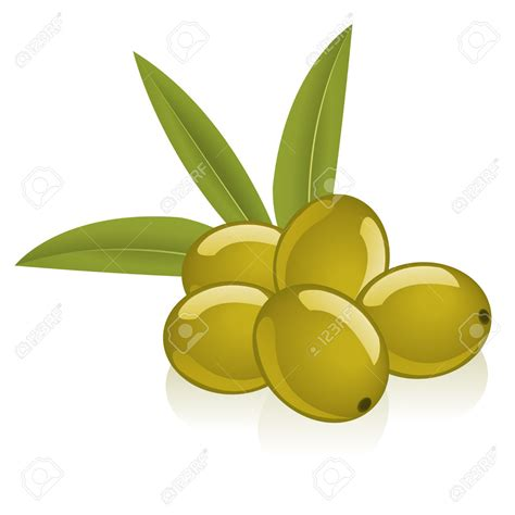 olive clipart olive clipart free collection download and share olive