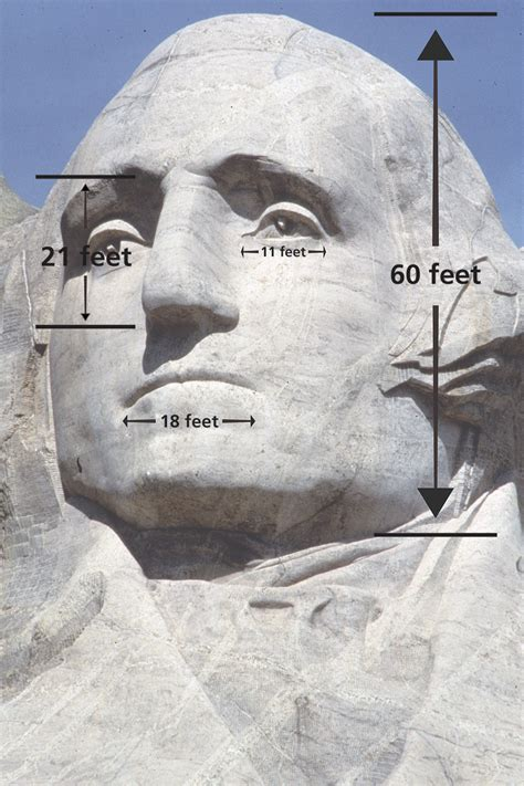 things that are 60 how big are the heads mount rushmore national memorial