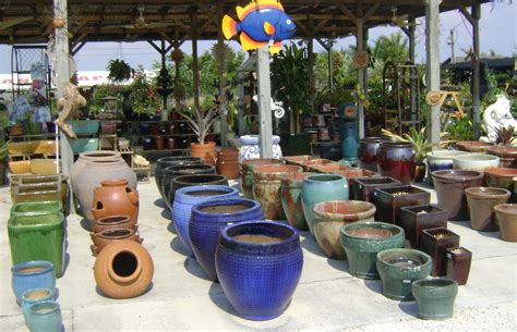 Tampa Plant and Tree Nursery Selection