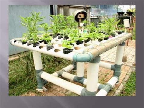 mengenal sistem hidroponik bertanam hidroponik mengenal hidroponik sebagai alternatif urban gardening