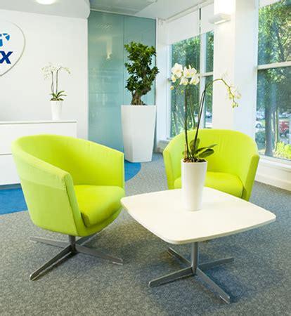piante ufficio le piante adatte all ufficio pollicegreen