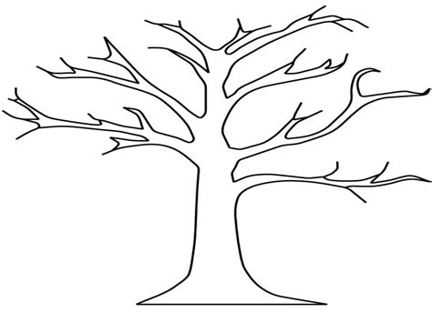 tree template without leaves trees without leaves coloring pages sketch coloring page