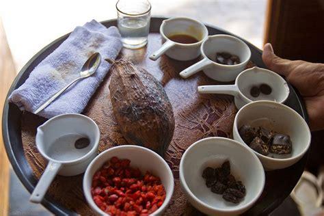 Coffee Bean Di Bali 15 extraordinary things to do in candidasa for the island getaway