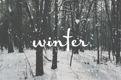 fotos tumbrl invierno confrases winter is coming winter gif frases quote