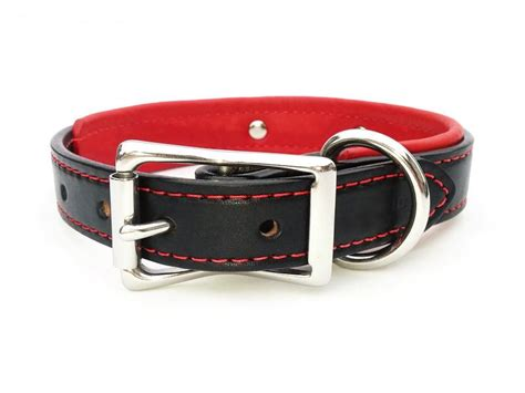 collar with nameplate padded leather collar with laser engraved nameplate flying collars