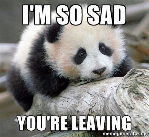 So Sad Meme - i m so sad you re leaving sad panda meme generator