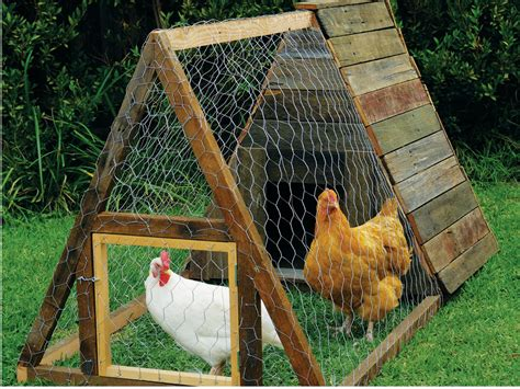 build an a frame house build an a frame chicken house new zealand handyman magazine