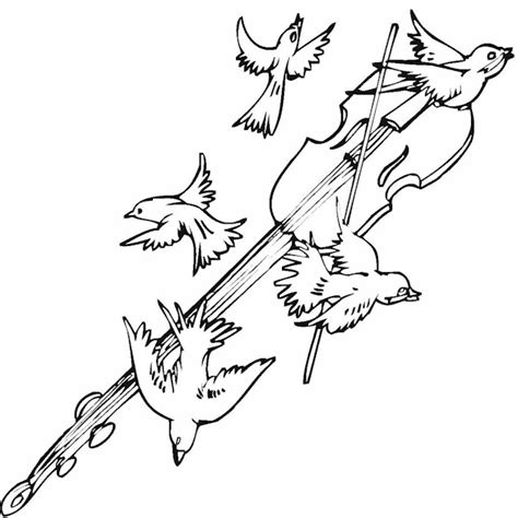 Bird Coloring Page Bird Coloring Pages Free