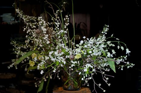 emily thompson flowers emily thompson turns the cultivated organic world into art