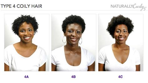 type 4 bold hair dress your curly hair guide what s your curl pattern