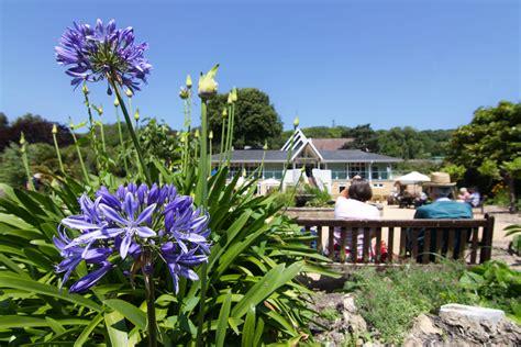 ventnor botanic gardens funnel