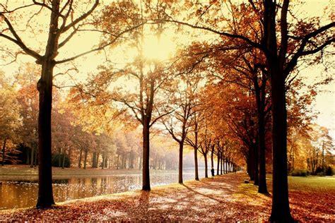imagenes de welcome november vergi 223 meinnicht liebeserkl 228 rung an den november
