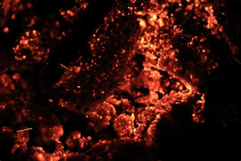 red hot fire red hot texture burning coal fire place photo texturex