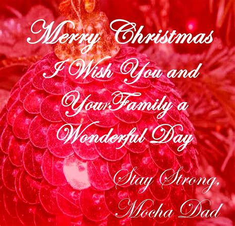 merry christmas quotes  picshunger
