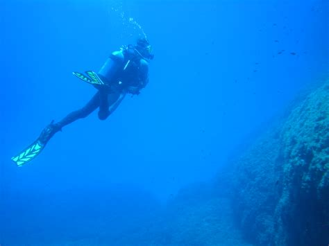 dive trips dive trips diving in