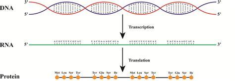 q protein code treatment for recurring ivf failure ivf failure