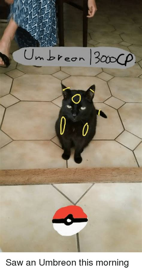 when i saw these pics this morning i thought they were in a much 25 best memes about umbreon umbreon memes