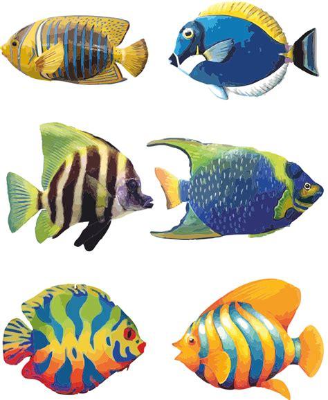 tropical fish tattoo designs 18 simple fish design images fish designs fish