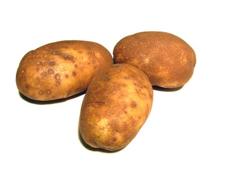 potatoes not of the eatin sort discussion forums