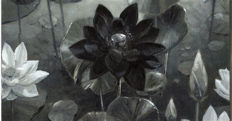 black lotus push and pull black lotus