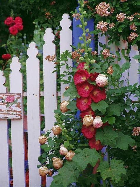 cottage garden fence cottage garden fence flowers