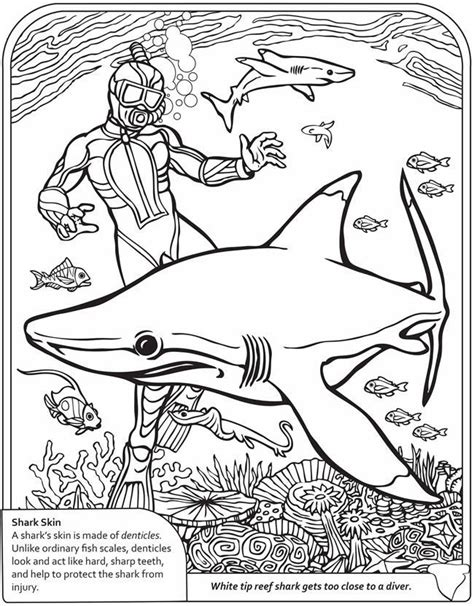 coloring books for boys sharks advanced coloring pages for tweens boys geometric designs patterns underwater theme surfing practice for stress relief relaxation books shark coloring pages printable coloring home