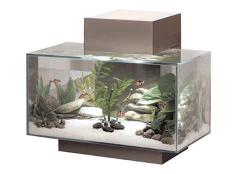 fluval edge pewter aquariums amazing amazon amazon com fluval edge aquarium set pewter 6 gallon