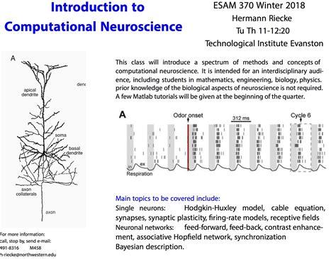 pattern formation in neuroscience hermann riecke home page