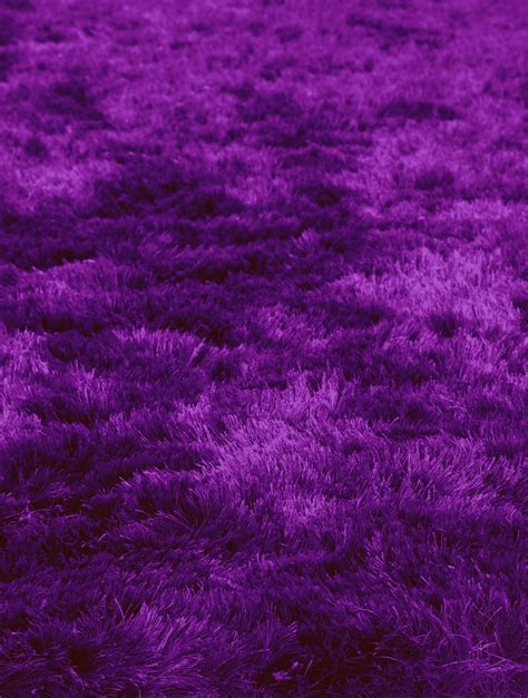 purple fluffy rug violet rug rugs ideas