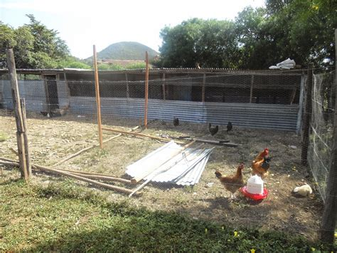 Chicken House Design And Construction In Kenya Free House Plans Designs Kenya