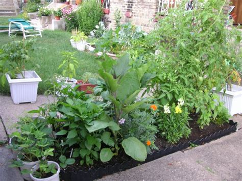 Square Foot Gardening Flowers Square Foot Gardening Is It A Gimmick
