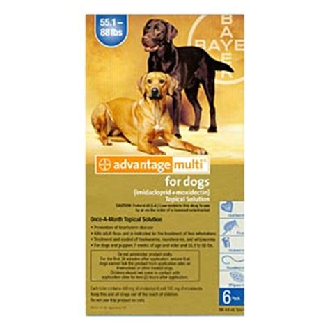 advantage for dogs 55 lbs 12 pack advantage multi for dogs 55 88 lbs 12 month blue supply vetdepot