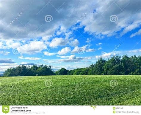 green field with blue sky stock image image of sunny