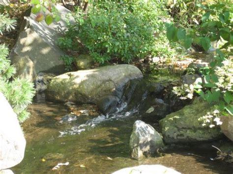 petit bassin jardin japonais petit bassin de jardin japonais images