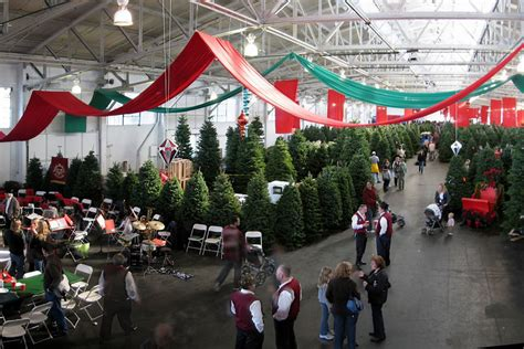 chicago christmas tree lot guardsmen tree lot things to do in san francisco