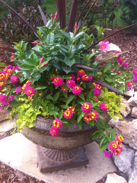 347 best images about outdoor flower container ideas on pinterest window boxes bird baths and