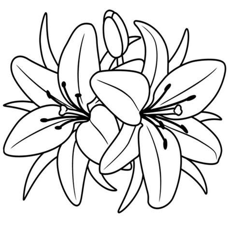 disegni colorati fiori disegni di fiori da colorare foto 23 40 nanopress