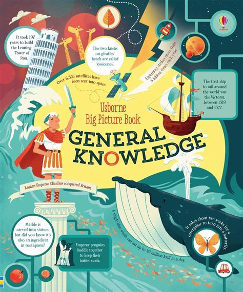 the big picture book big picture book of general knowledge at usborne