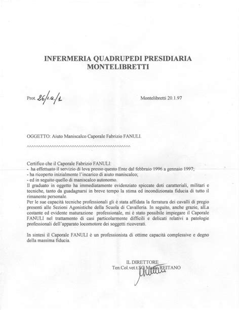 lettere di referenza fabrizio il maniscalco lettera di referenze ten col