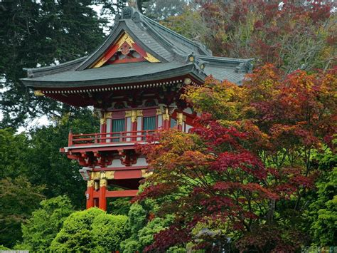 San Francisco Garden by Temple Gate Japanese Tea Garden San Francisco Wallpaper