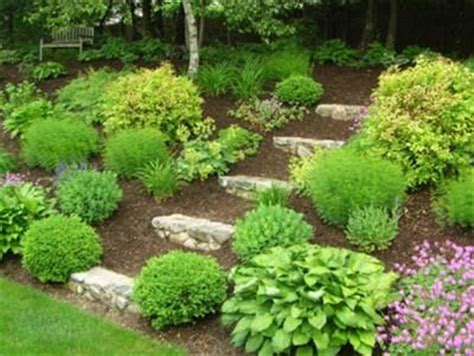 shade garden design ideas on front yard landscaping landscaping the gardening and