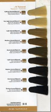 hair color levels hair color professional method for those of you