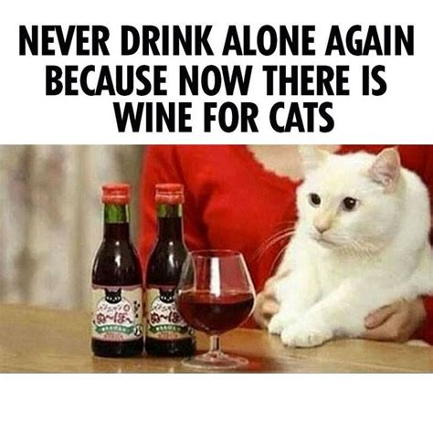 Drinking Alone Meme - never drink alone again rescue memes pinterest