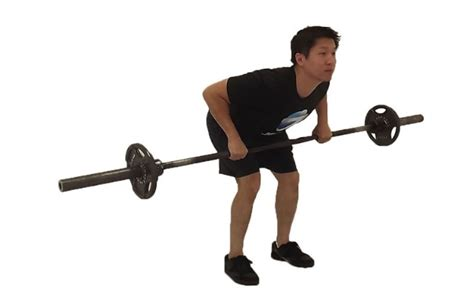 bent over row bench a useful guide to weight lifting exercises different