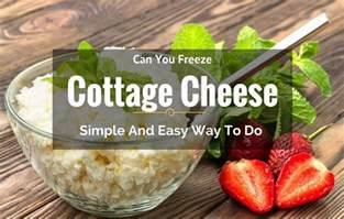 can you freeze cottage cheese simple and easy way to do